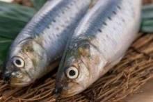 Как правильно выбирать рыбу?