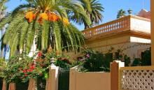 Остров Тенерифе: достопримечательности
