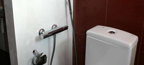 Гигиенический душ в туалете. Назначение и виды